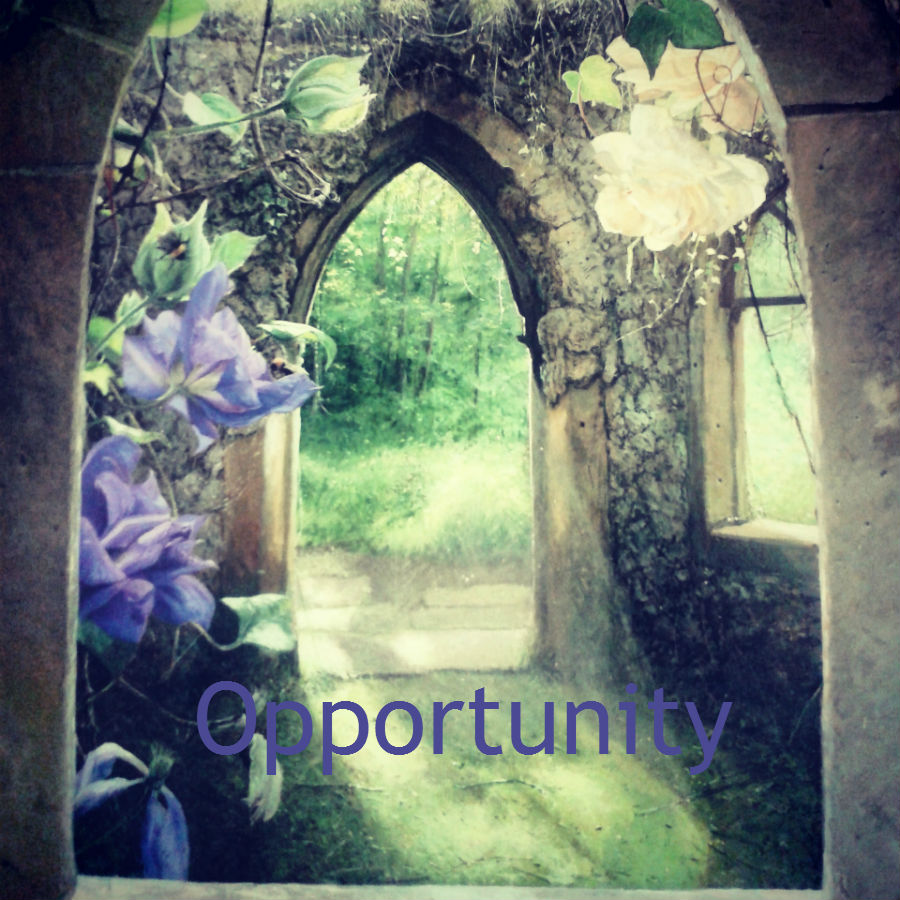 opportunity, law of attraction