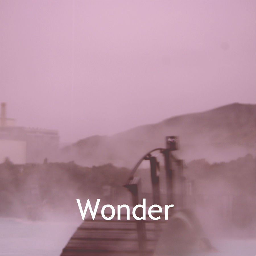 wonder, law of attraction